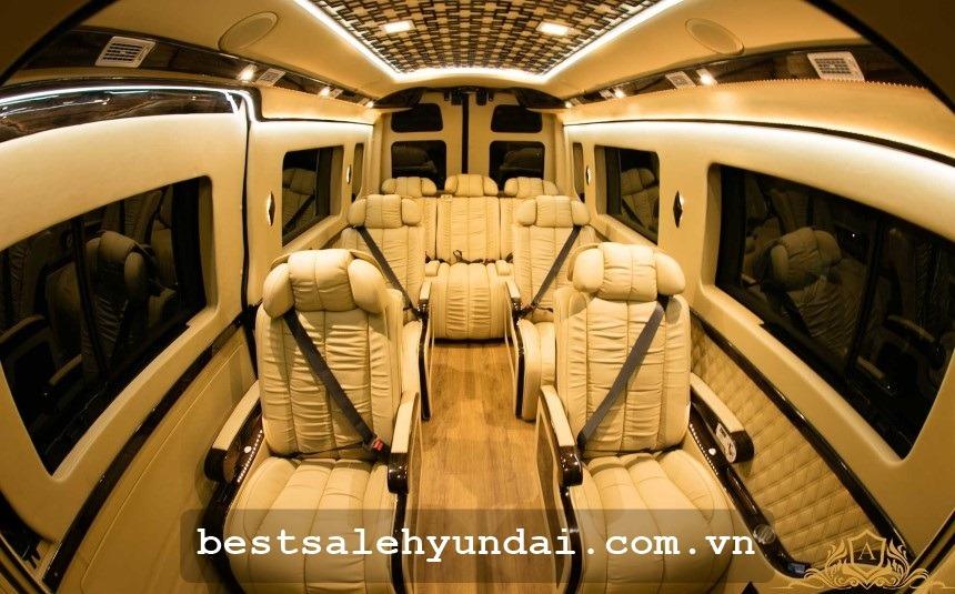 Hyundai Solati Limousine 2020 Noi That